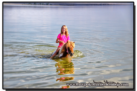addie-and-pony-swimming