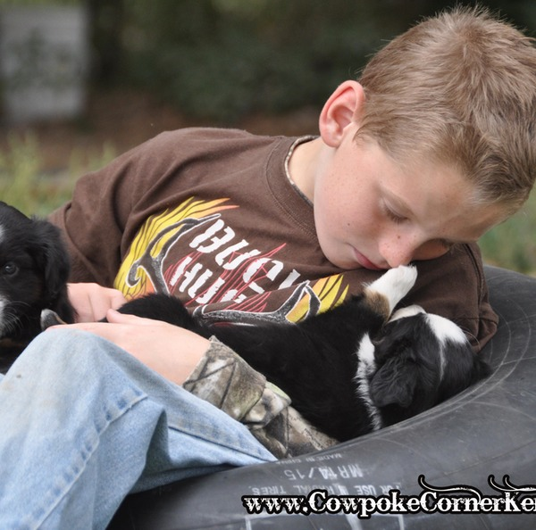 Aiden and Puppies_0228