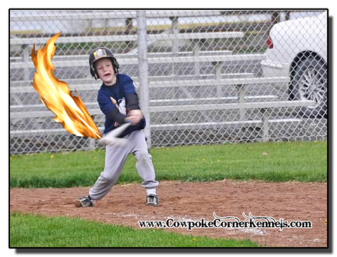 Aiden-Baseball-Flames