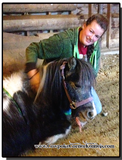 Billie-the-pony-whisperer 5930