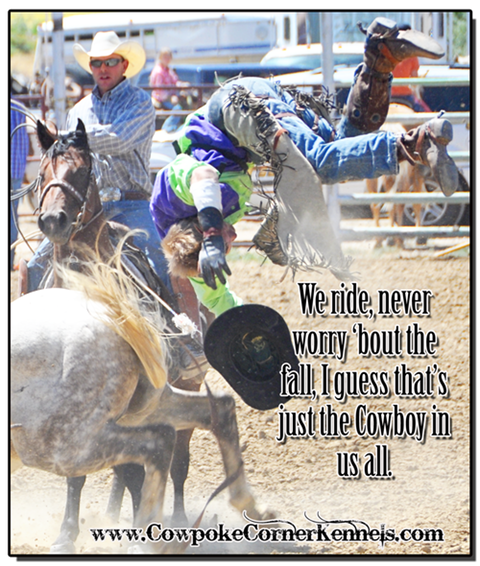 Cowley-Pioneer-Day-rodeo-words 0478