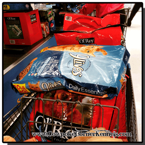 Dog-food-shopping 5956