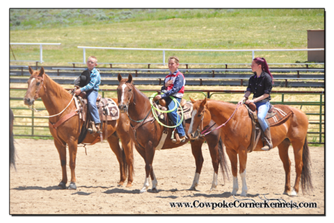 Rodeo-Camp 0742