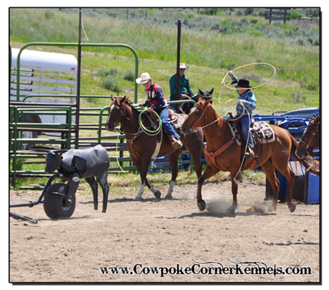 Rodeo-Camp 0750