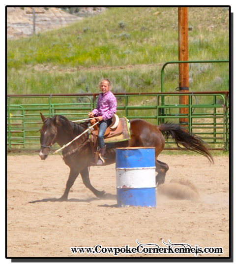 Rodeo-Camp 0778