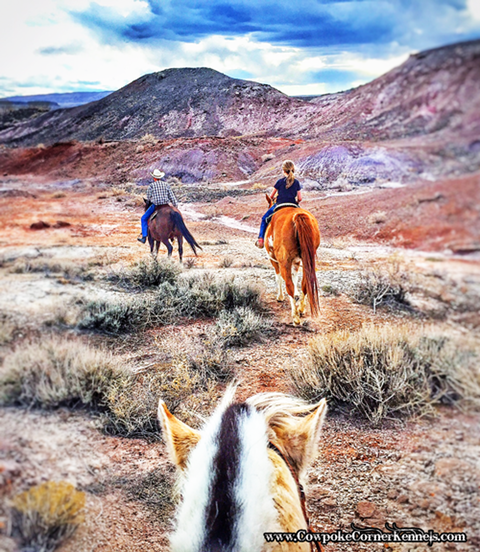 trail-ride-in-red-hills-wyoming