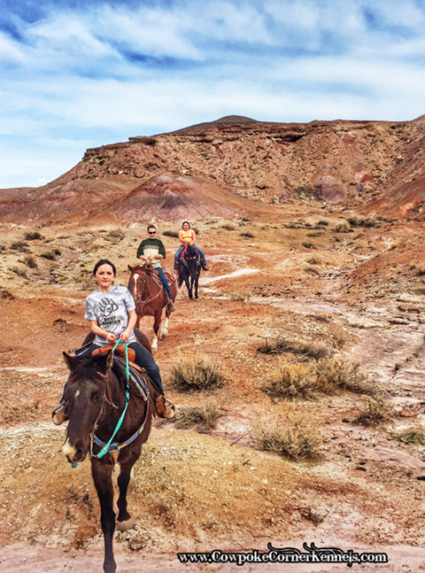 Wyoming-trail-ride-red-hills